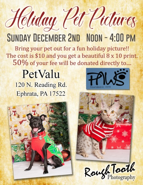 Holiday Pet pics -Ephrata 2018