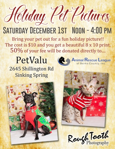 Holiday Pet pics -SS 2018